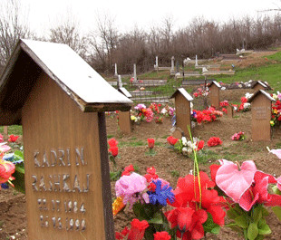 VÉR ÉS ECET: Krushë e Madhe, a koszovói savanyúságbirodalom VÉR ÉS ECET: Krushë e Madhe, a koszovói savanyúságbirodalom krushe te vogel