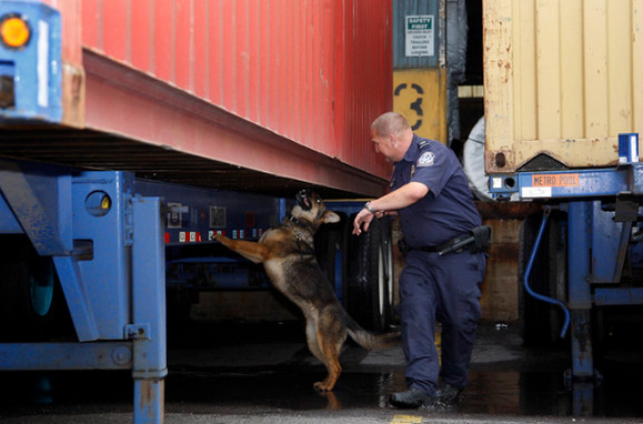 REKORD DROGFOGÁS AZ USÁ-BAN: Az elkövetők Montenegróból származnak REKORD DROGFOGÁS AZ USÁ-BAN: Az elkövetők Montenegróból származnak msc gayane dog