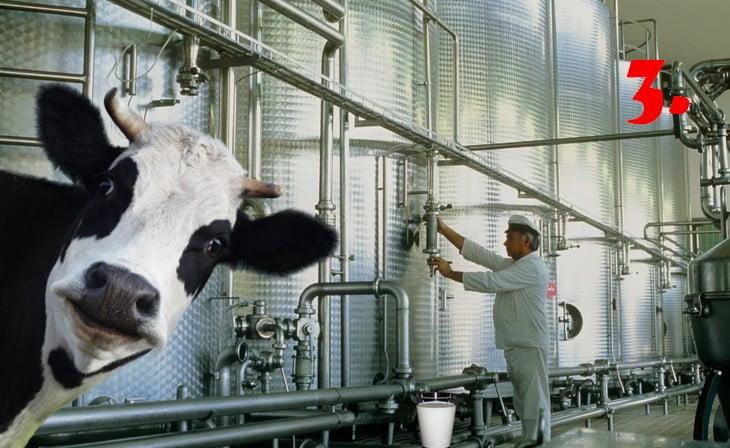 LEZÁRULT A TEJHÁBORÚ: A Belje veszi meg a Megglét, de az igazi győztes Eszék-Baranya megye főispánja LEZÁRULT A TEJHÁBORÚ: A Belje veszi meg a Megglét, de az igazi győztes Eszék-Baranya megye főispánja tej meggle 3