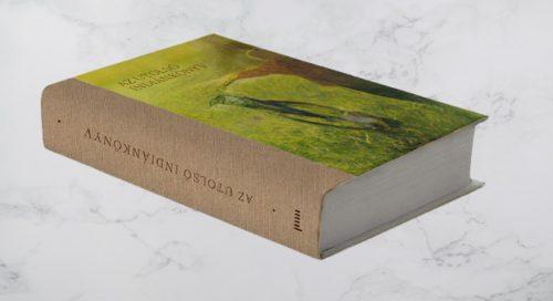 Az utolsó indiánkönyv az utolsó indiánkönyv Az utolsó indiánkönyv 1308553  1  removebg preview 500x272